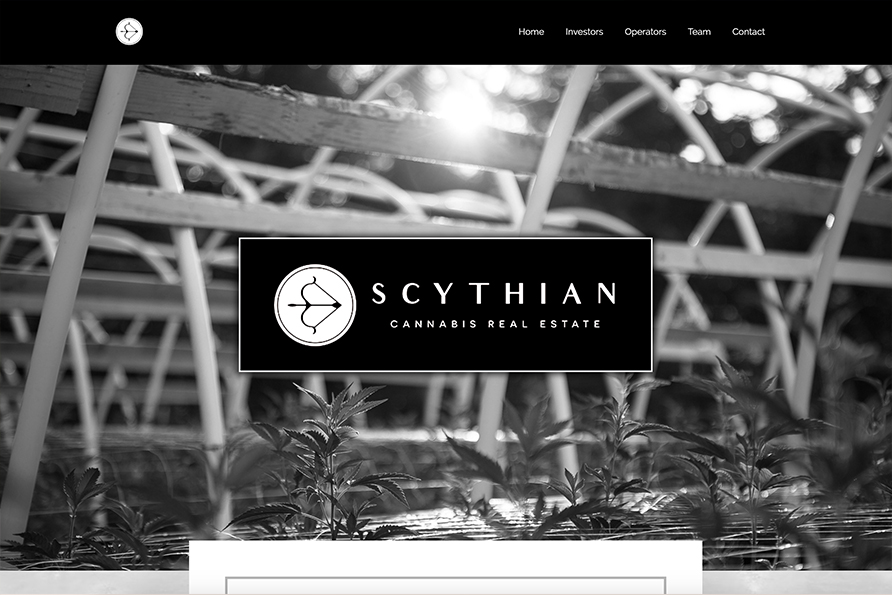 A thumbnail image of the scythianre.com homepage